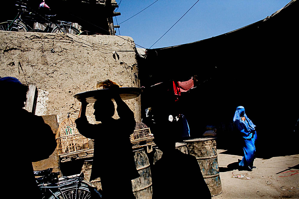 AfghanYear60013