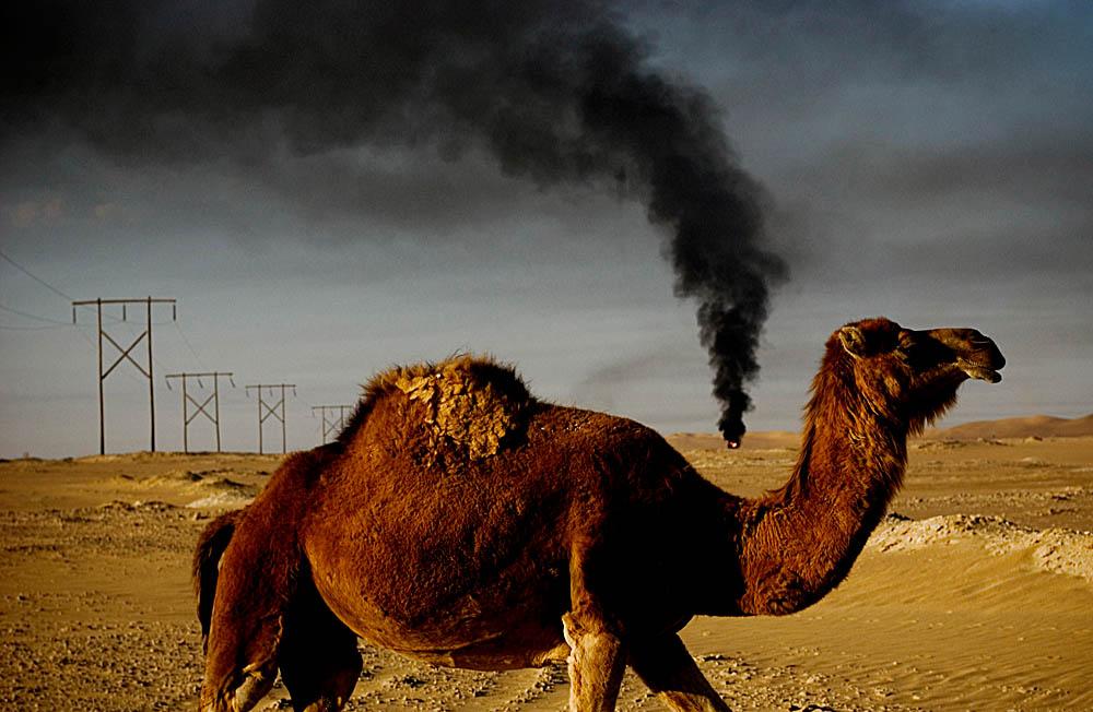 Libya0001