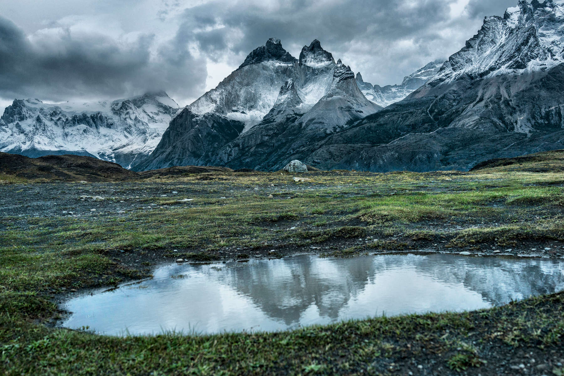 TORRE DEL PAINE, CHILE - MARCH 9: Adult (Photograph by Benjamin Lowy)