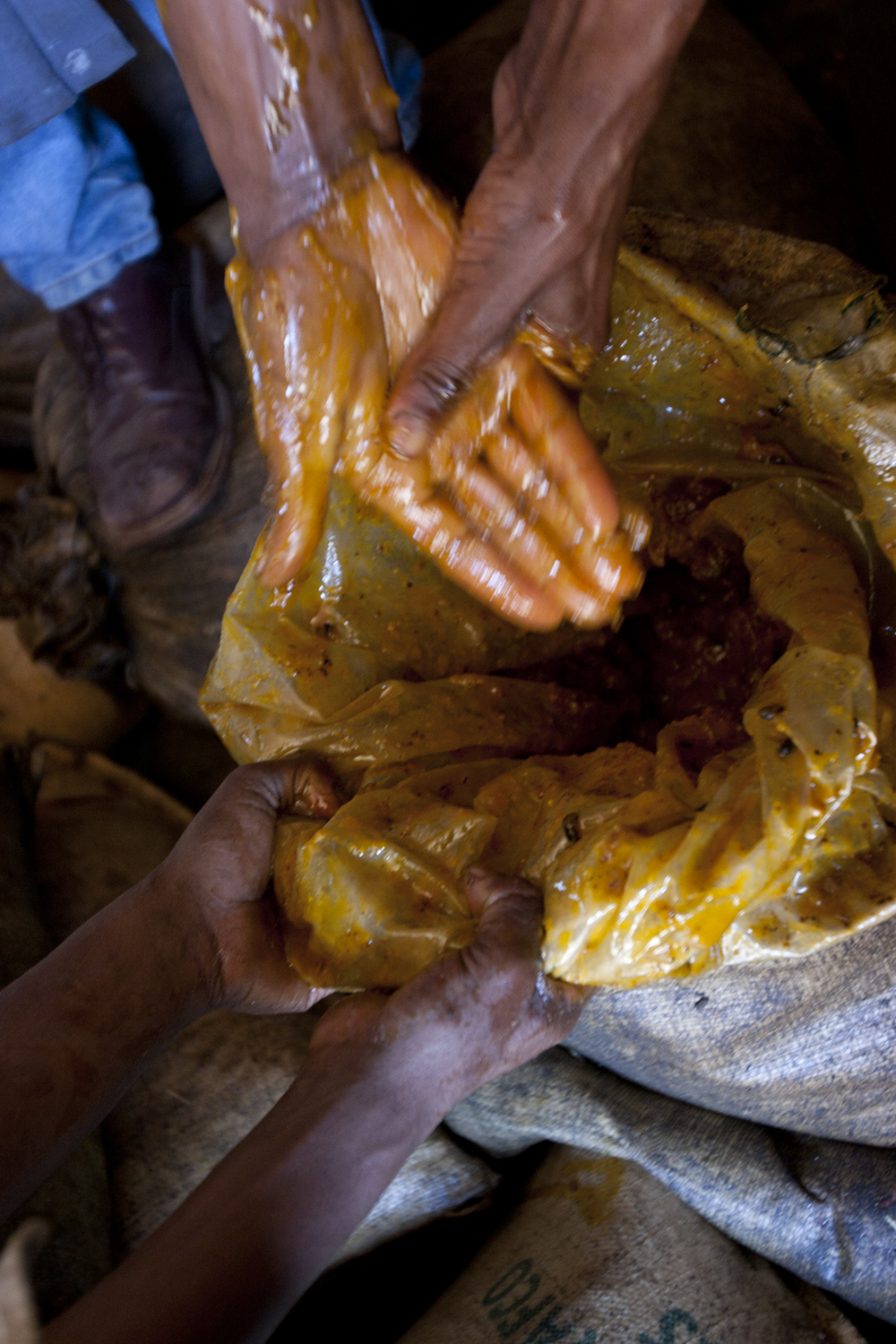 Raw Honey, Ethiopia. Story for Saveur Magazine.