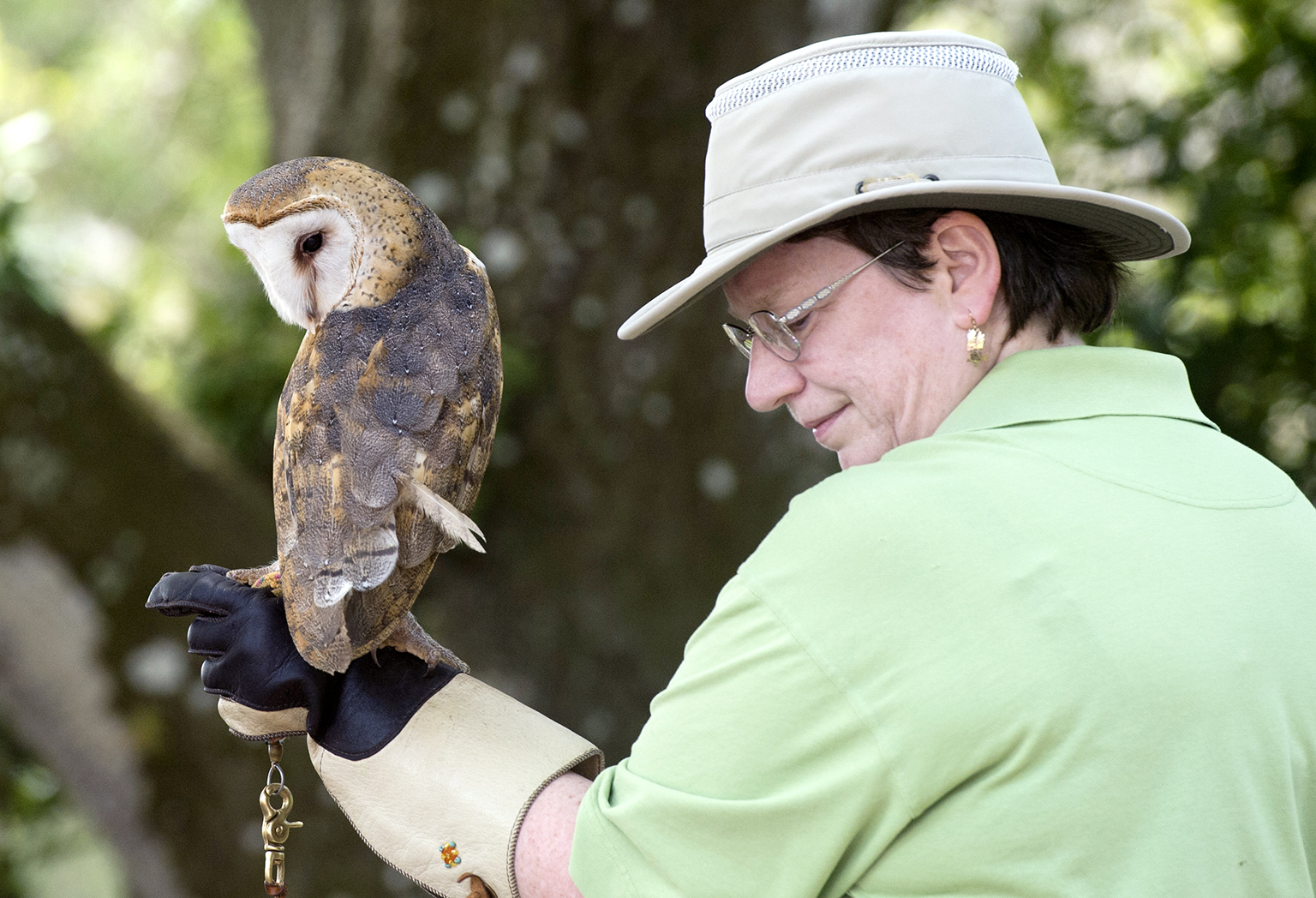 The Treasure Coast Wildlife Center held a free, open house to celebrate their 43rd anniversary on Saturday, March 25, 2017, in Palm City. The event included guided nature trail walks, face and rock painting, educational demonstrations and a patient release. The center is a non-profit organization that depends on donations and volunteers to care for a wide variety of wild animals, including a bald eagle, a crested cara cara, a falcon, owls, hawks, tortoises, alligators and crocodiles.