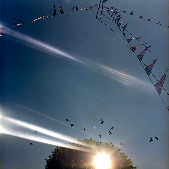 Multiple exposures made from two different scenes. #1 - Birds fly off a tree in Murphy on June 21, 2010. #2 - Rows of flag banners at a car dealership in Sasche on June 21, 2010.