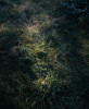 0015-KLJames-Portfolio-Edgehill-007