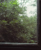 0021-KLJames-Portfolio-Edgehill-004