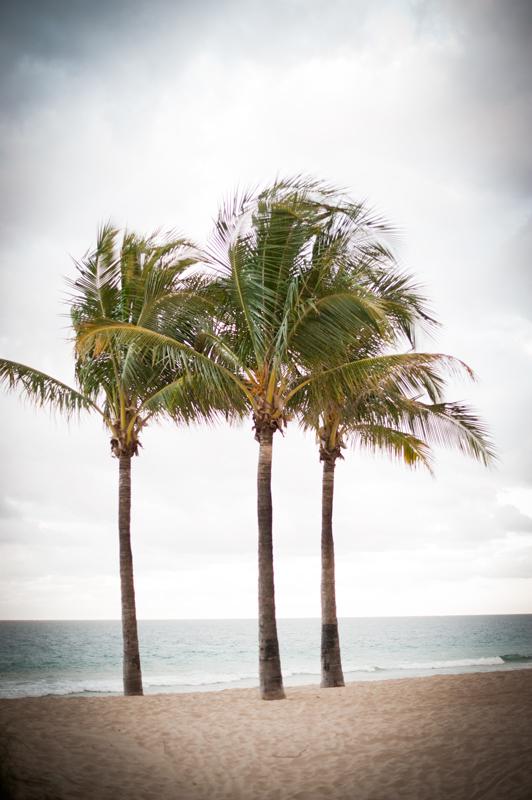 Miami015