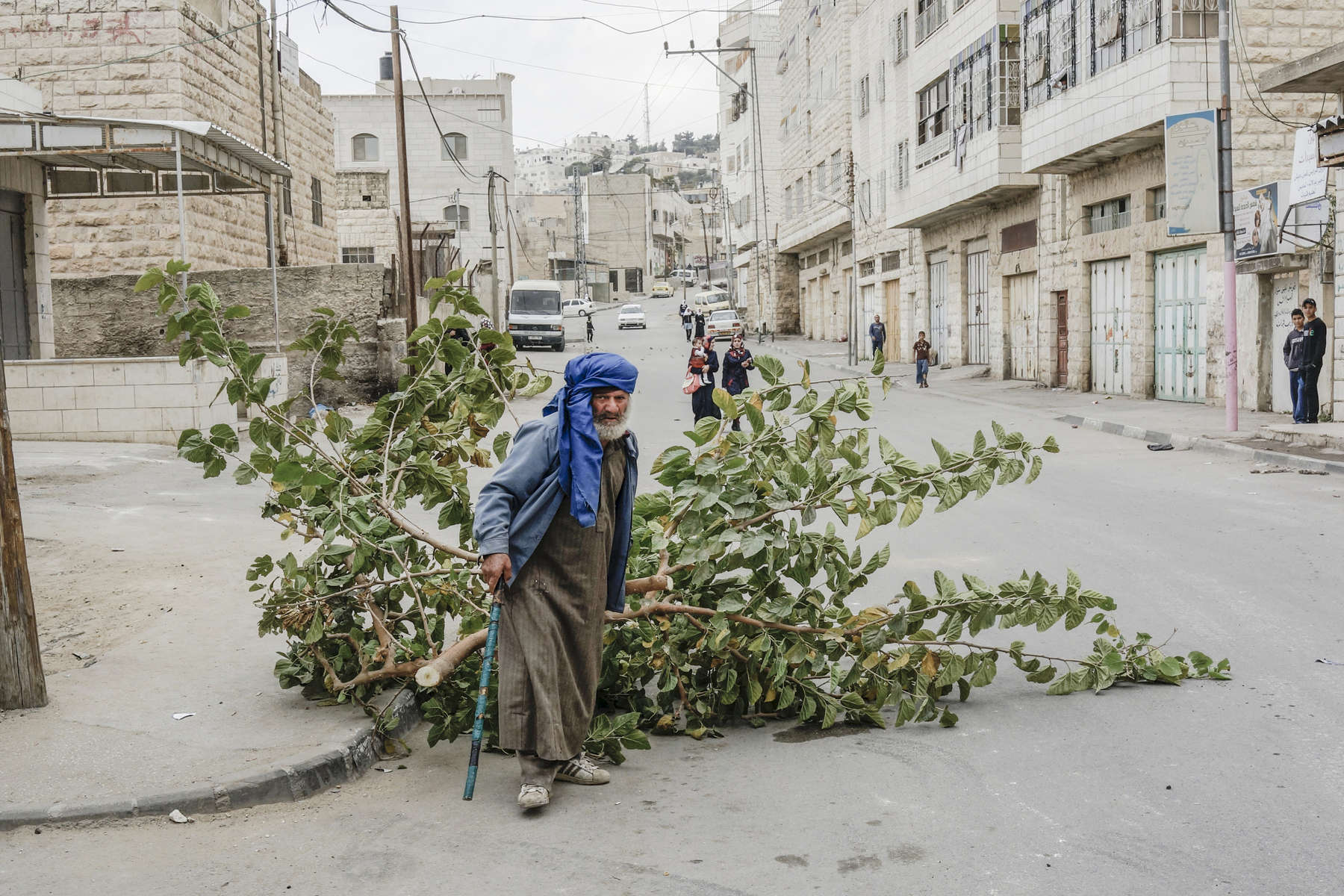 2013.  Hebron.  Palestinian Territories/The West Bank. A man drags an olive tree through a clash between school children and Israeli soldiers.