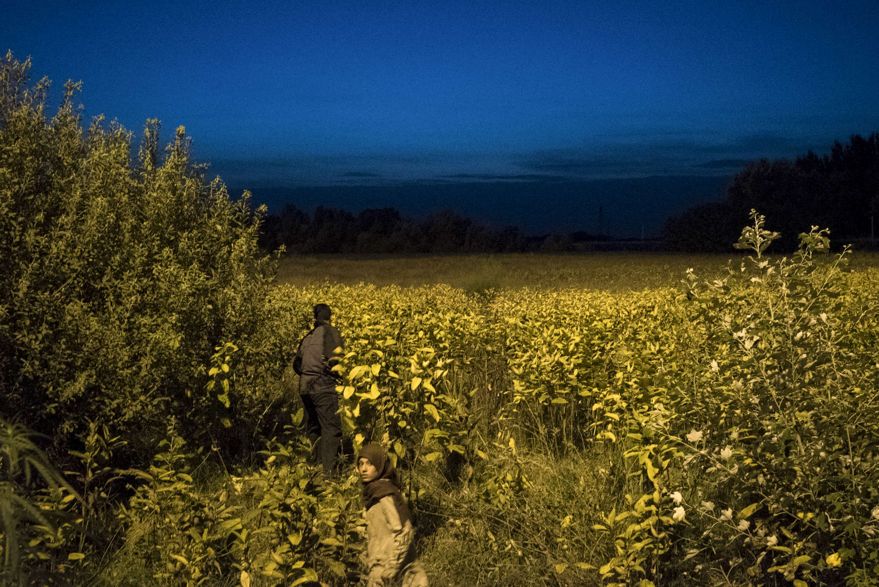 2015.  Horgos.  Serbia.  The closed Serbian-Hungarian border. The border had closed at midnight earlier that day, but thousands of migrants unaware of an alternative route hoped that it would be opened.  At the border fence thousands of migrants set up tents and demonstrated into the night while Hungarian police stood guard on the other side and shined their flashlights at the cameras of photographers attempting to photograph them. It quickly became clear that it wouldn't reopen and the next morning most pivoted towards Croatia.  There were clashes the next day at the border, and Hungarian riot police tear gassed dozens of migrants.