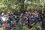 2015.  Tovarnik.  Croatia.  A crowd crashes through a barrier at the train station on the Croatian-Serbian border.  It was over 100 degrees fahrenheit and thousands of migrants waited for trains to take them to Zagreb, while Croatian riot police kept them fenced in.  A promised train never materialized and after hours of waiting in the baking sun without food or water a surging crowd crashed through the police lines.  They spent the rest of the day seeking shade in a field and in the shadow of farm silos.  By evening buses began taking them to Zagreb.