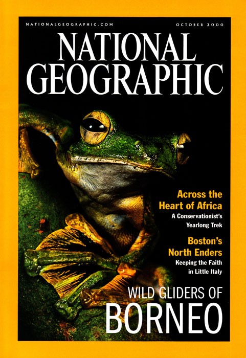 -- This cover story illustrates different species in Borneo that have adapted to glide though the rain forest.