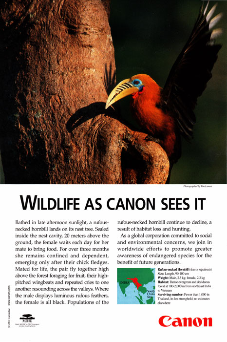 Canon Ad in National Geographic  - January 2001