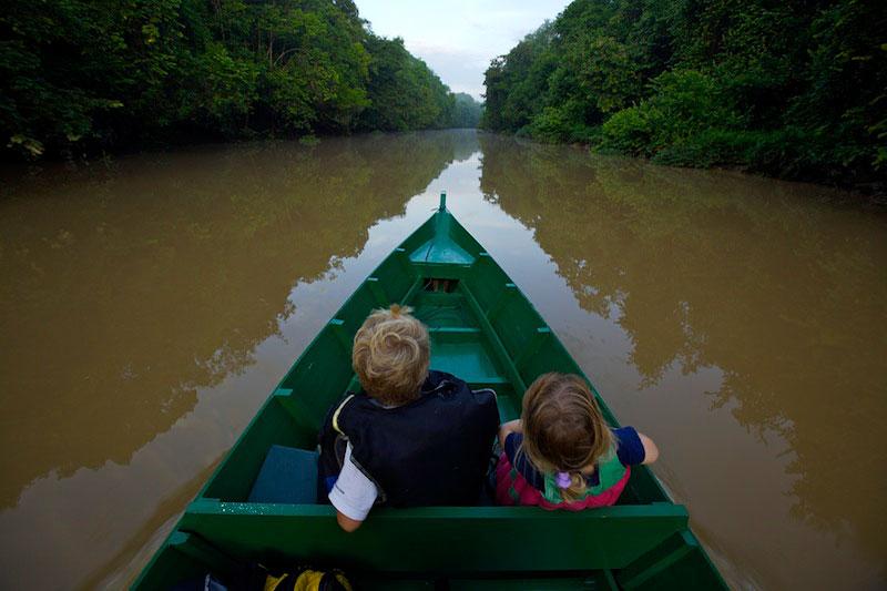 Kinabatangan Wildlife Sanctuary, Malaysia