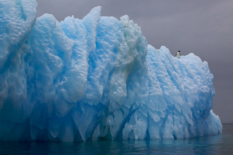 Erebus and Terror Gulf, Antarctica