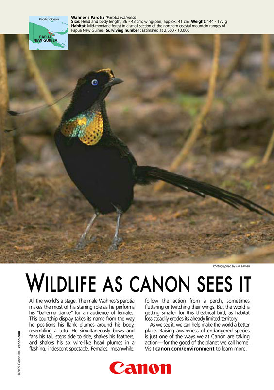 Canon Ad in National Geographic - December 09