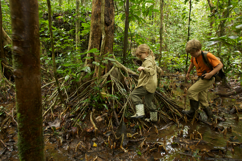 Gunung Palung National Park, Borneo