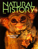 "--  Tim's image of a spectral tarsier was used on the cover for a story entitled ""Married to the Mob"".  Tim's picture of a knobbed hornbill was also used in the story."