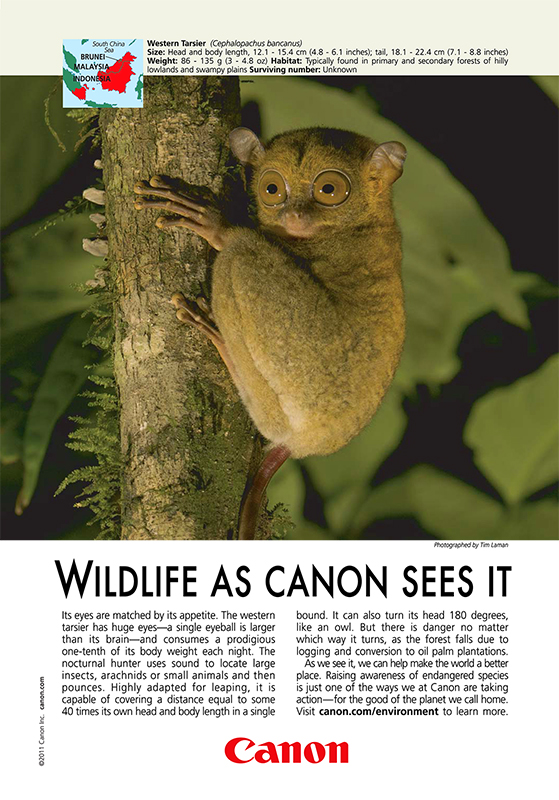 Canon Ad in National Geographic - Nov 11
