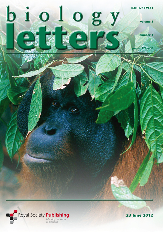 -- Tim's picture of an adult male Bornean orangutan was published on the cover of volume 8, number 3.