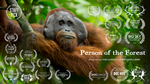 Person of the forest is now on Vimeo.  You can view the entire short film by clicking:  Person Of The Forest.