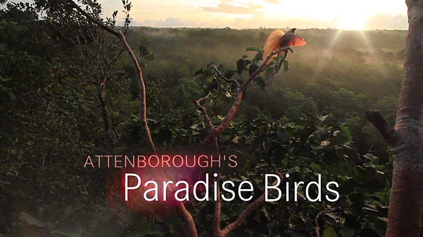 Tim's photography is featured in this BBC2 film from 2015.  To see additional content from the show visit the BBC2 website.