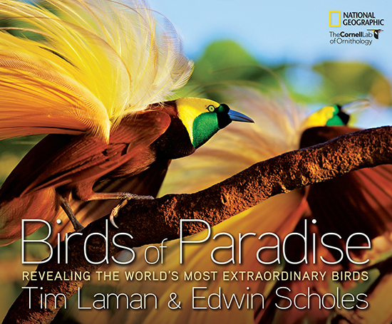 Currently out of stock.    To place an order email Office@TimLaman.com  Signed books are projected to start shipping again at the end of August.  With photographs and descriptions of all 39 species and exciting tails of their adventures, this book is sure to amaze.  You can <u>purchase a copy </u></a>of the stunning Birds of Paradise with Tim Laman's signature through our <u>online archive</u></a>.