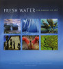The iLCP produced this book on the state of our Earth's freshwater ecosystems.  The book explains how they are in peril and has many photographs which illustrate this as well as the beauty all over our planet.  Tim has three images in this book, one of which is a double page spread of whooper swans in lake Kussharo.To learn more about the book and to purchase, visit the iLCP website.
