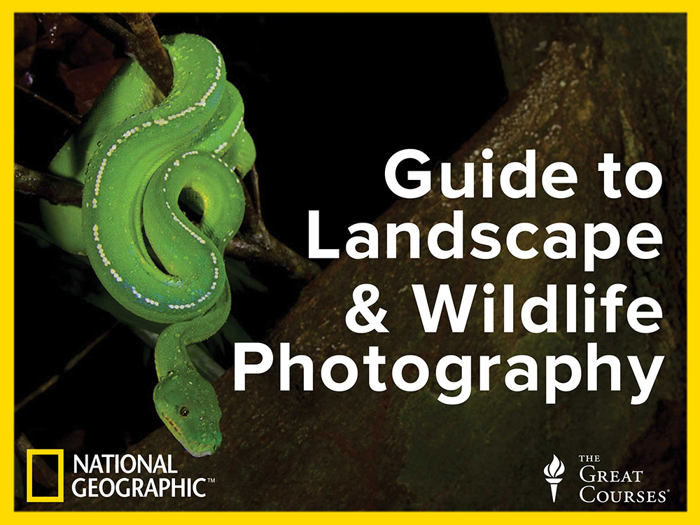 This is a digital photography course taught by Tim Laman and Michael Melford.  Tim has 12 lectures on Wildlife Photography.  You can purchase the course through The Great Courses.