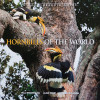 Hornbills Of The World is a photographic guide that gives descriptions of all the species and other general information like their unique breeding behavior.  Tim's photographs are used for most of the Asian species of hornbills.  You can purchase this book at our book store.