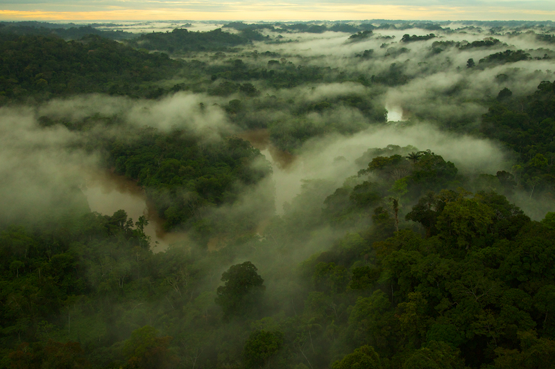 NGM Yasuni National Park Amazon Adventure
