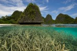 Split level/over-under view of karst islands and staghorn corals in the Wayag Group.