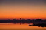 Sunrise over Swans Cove Pool, Chincoteague National Wildlife Refuge, Assateague Island, Virginia