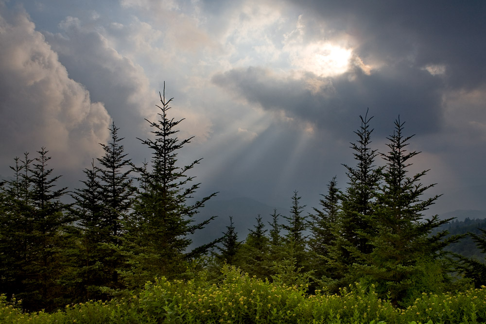 Sunbeams slice the sky as clouds roll out of the valley near Waterrock Knob on the Blue Ridge Parkway