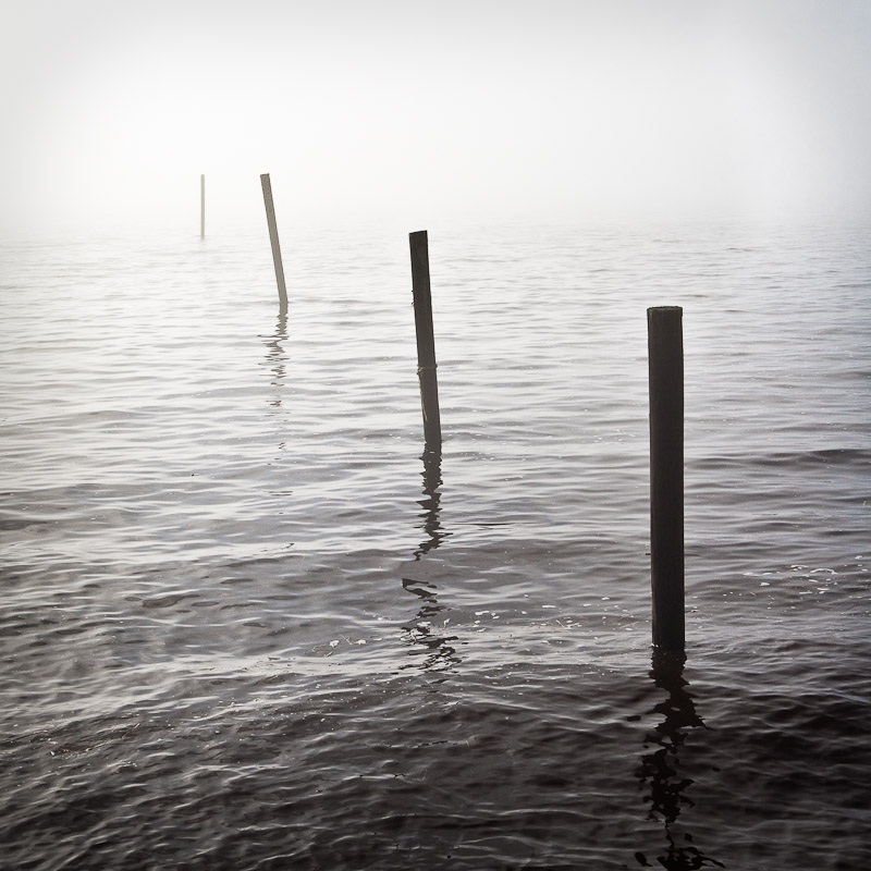 Fog along the Pungo River in Belhaven, North Carolina
