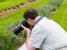 Seafoam Lavender Farm in Seafoam, Nova Scotia