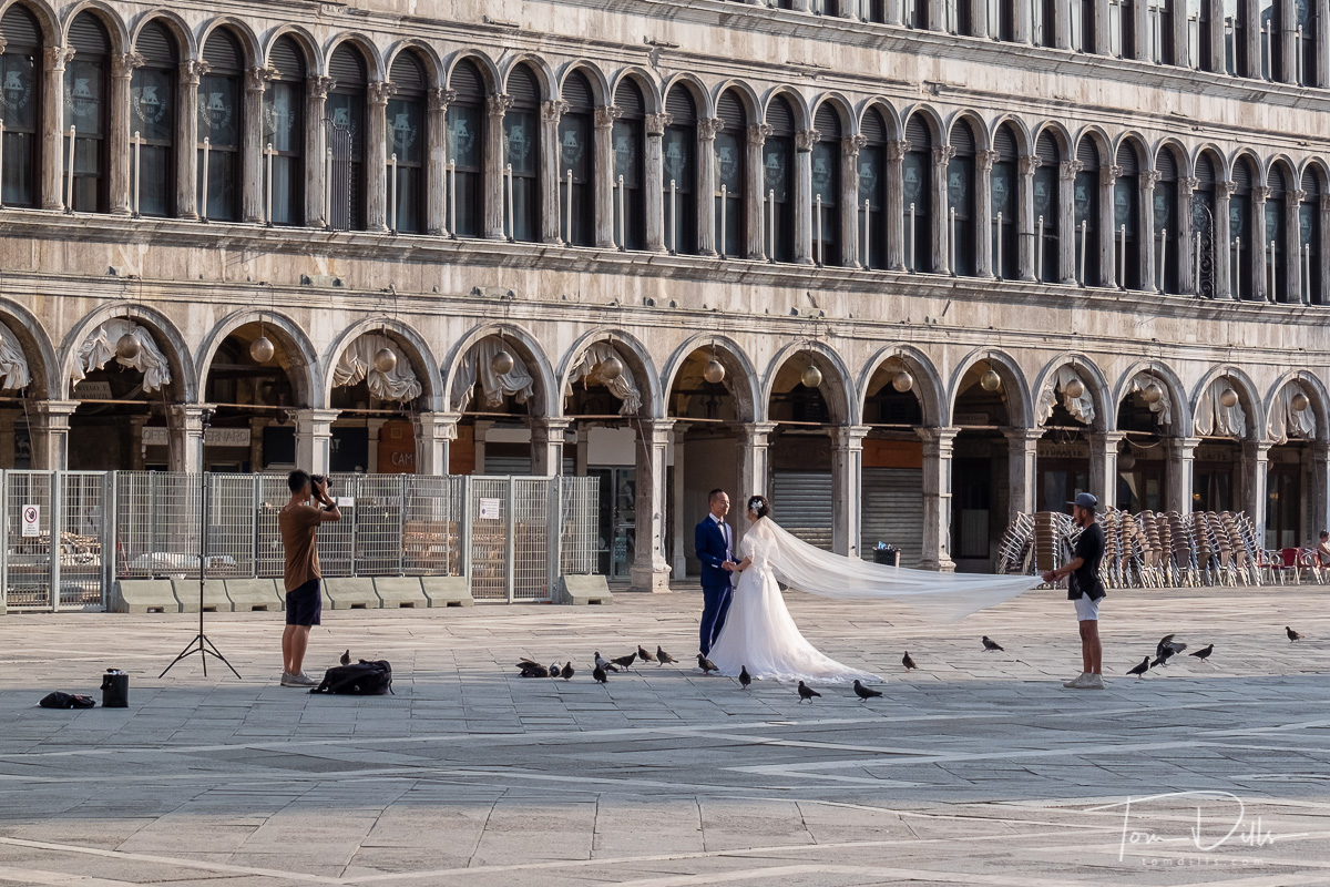 Wedding photo session in St. Mark's Square in Venice, Italy