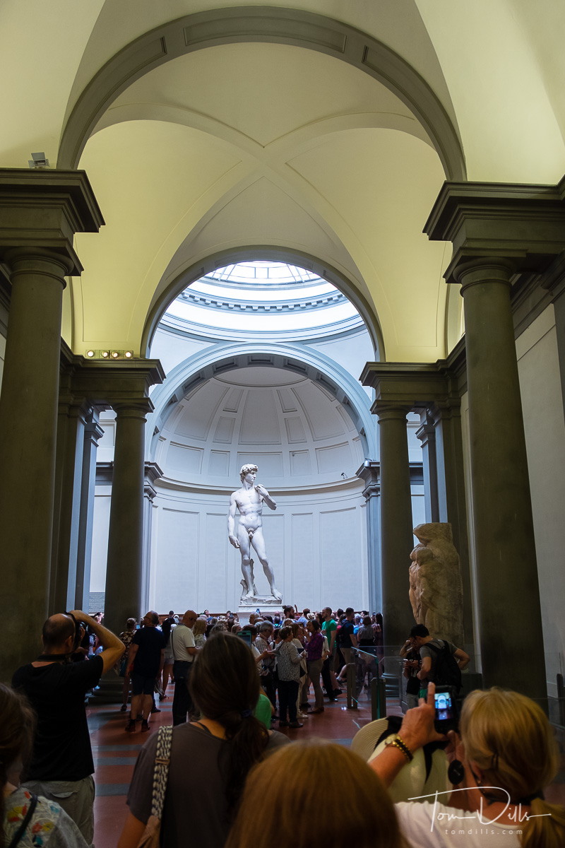 Michelangelo's {quote}David{quote} at the Galleria dell'Accademia di Firenze (Academy Of Florence Art Gallery)