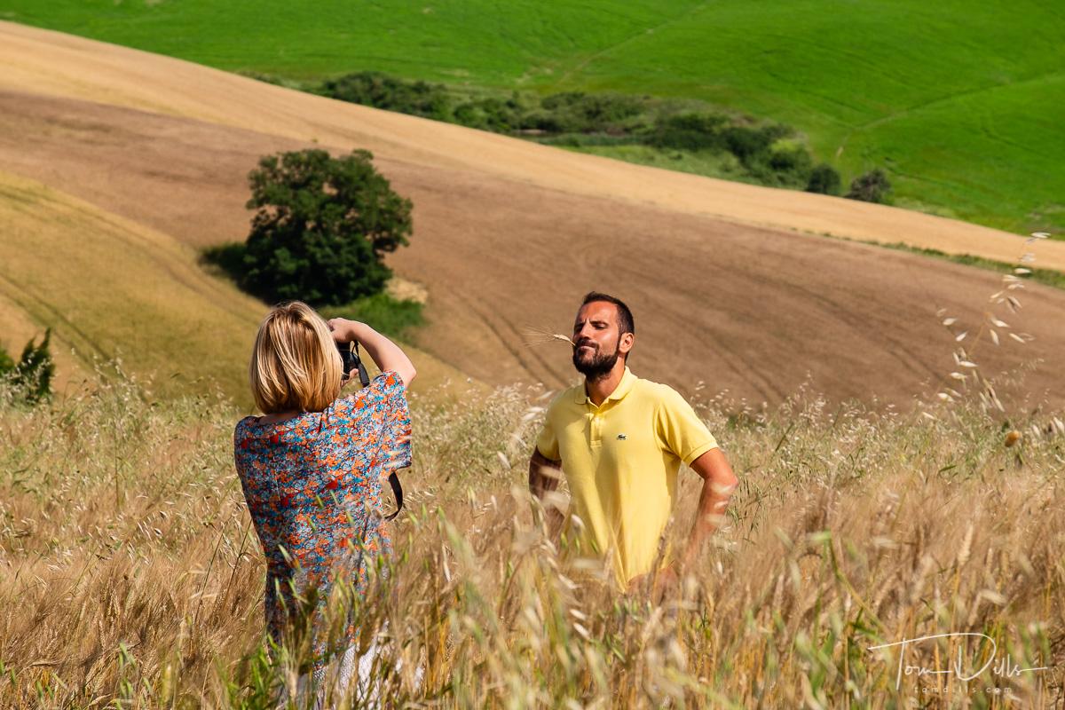 Tuscan countryside near Montalcino, Italy