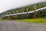 Trans-Alaska Pipeline near Copper Center, Alaska