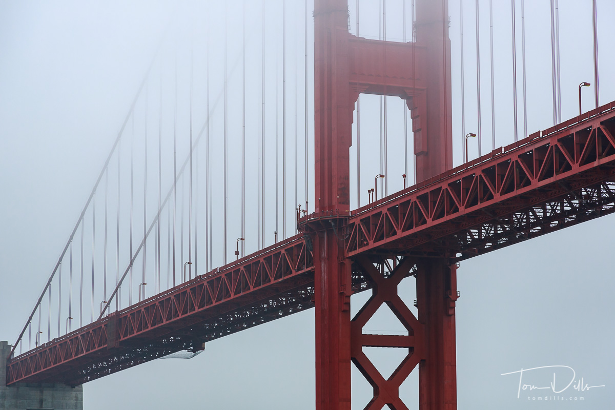 The Golden Gate Bridge viewed from our harbor tour aboard Blue & Gold Fleet