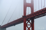 The Golden Gate Bridge viewed from our harbor tour aboard Blue & Gold Fleet
