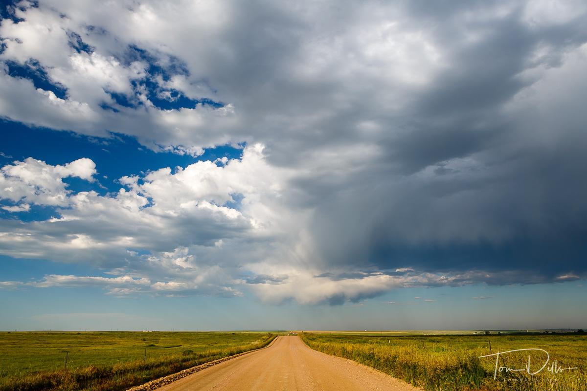 County Road 90 North of Fort Collins, Colorado