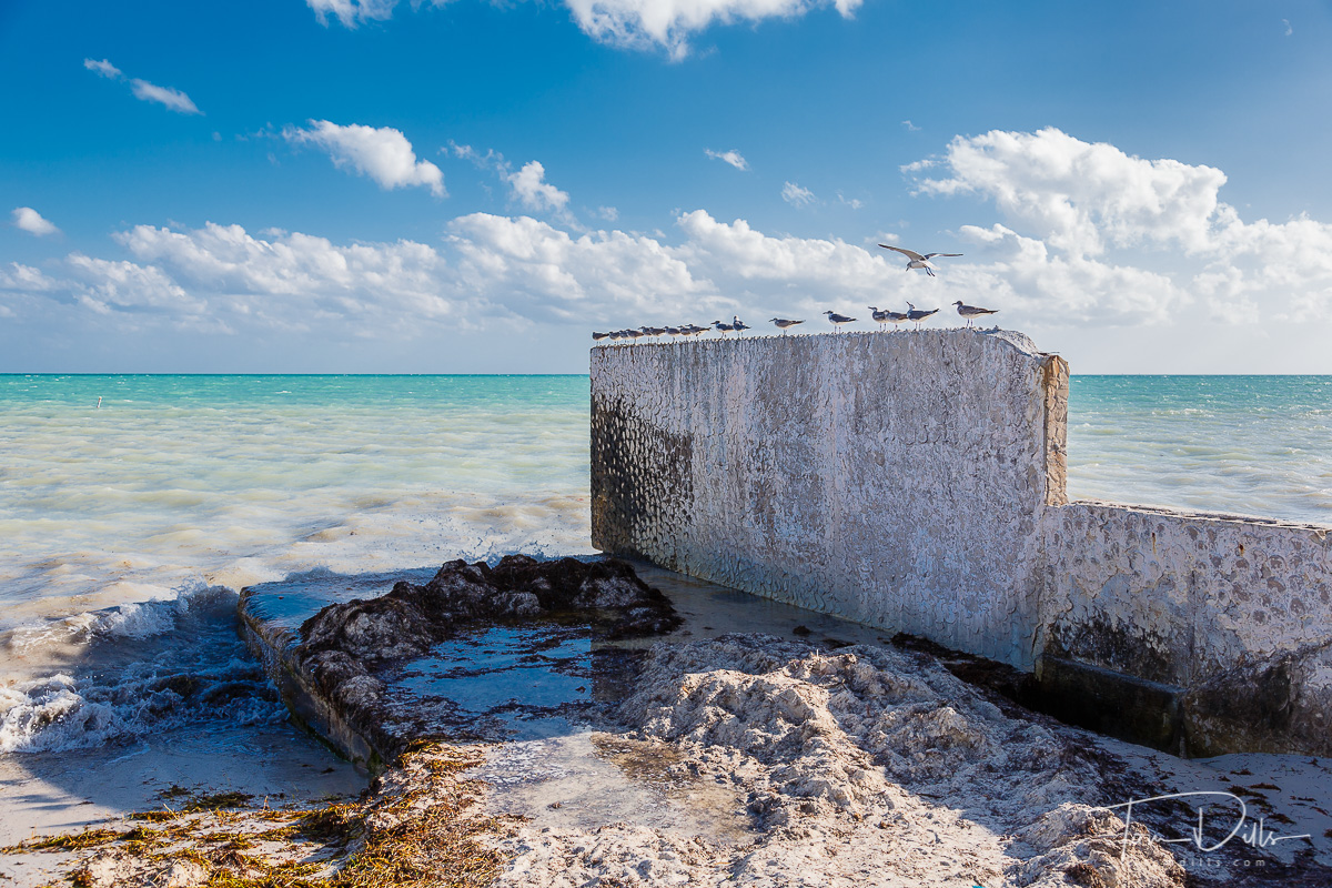 Remnants of an old wall at the end of Duval Street in Key West, FL