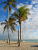 Hollywood Beach, Fort Lauderdale, FL
