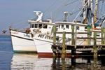 Fishing Boats at Old Dock, Fernandina Beach, Amelia Island, FL