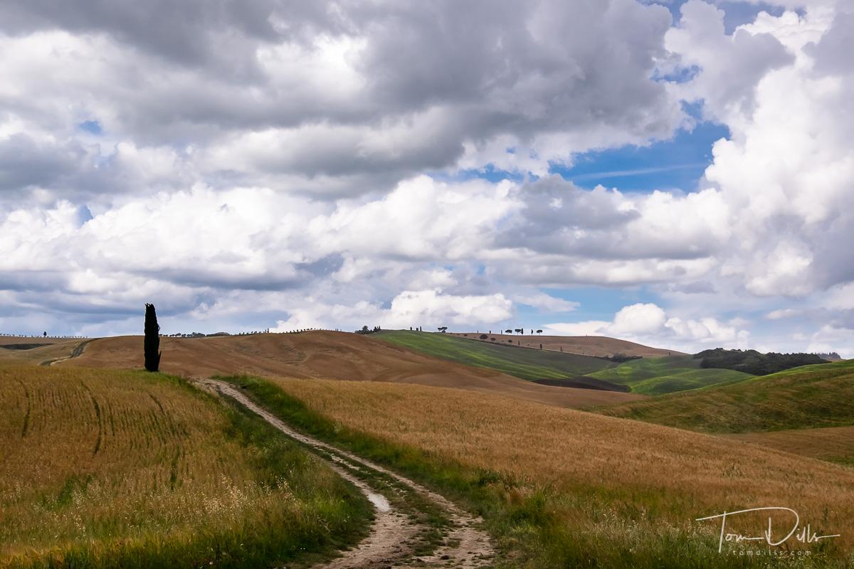 Tuscan countryside near Pienza, Italy