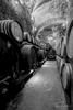 De' Ricci wine caves in Montepulciano, Italy