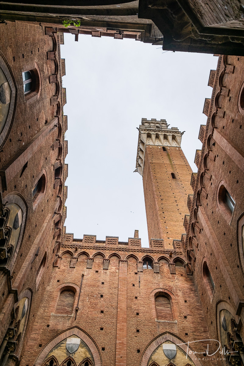 City government offices and the Tower of Mangia in Siena, Italy