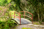 Jungle Gardens in Avery Island, Louisiana