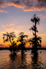 Sunset on Lake Martin, near Breaux Bridge, Louisiana