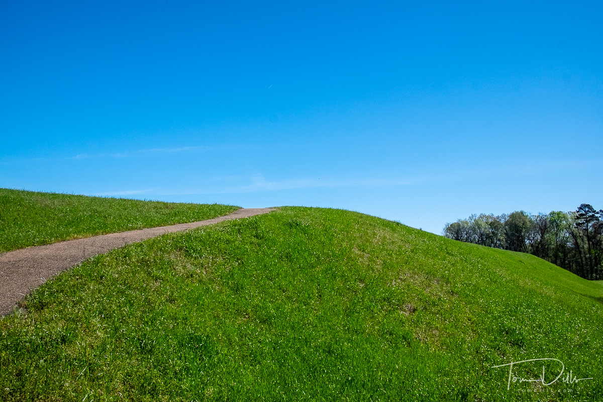 Emerald Mound near Natchez, Mississippi