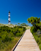 Cape Lookout Lighthouse - Cape Lookout National Seashore, NC